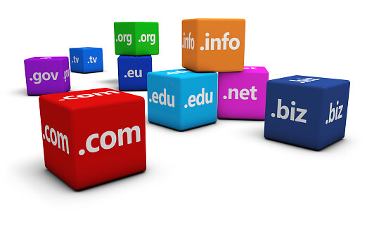 Domain Names and Domain Registration